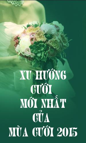 http://netmode.vn/