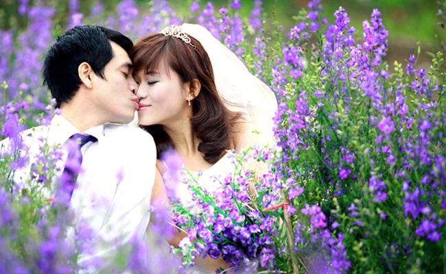 ảnh cưới cánh đồng hoa