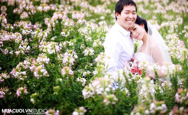 chụp ảnh cưới với hoa bách nhật