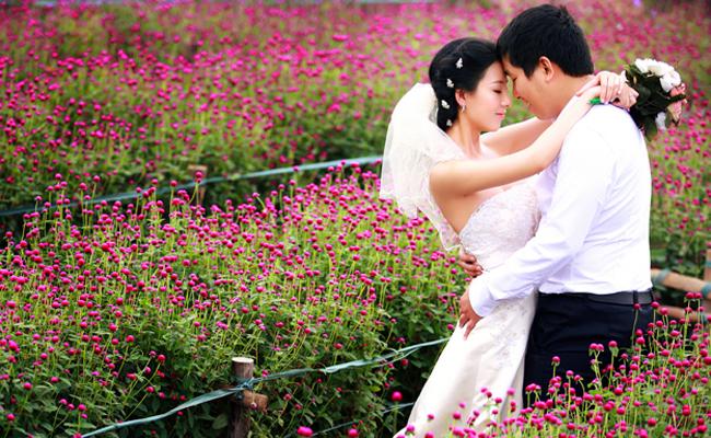 Ảnh cưới vườn hoa bách nhật