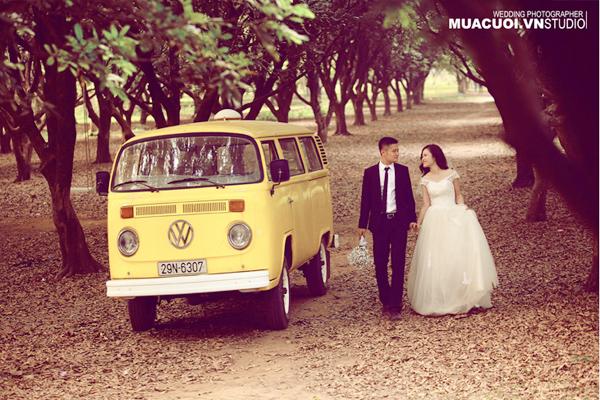 chụp ảnh cưới vườn nhãn gia lâm